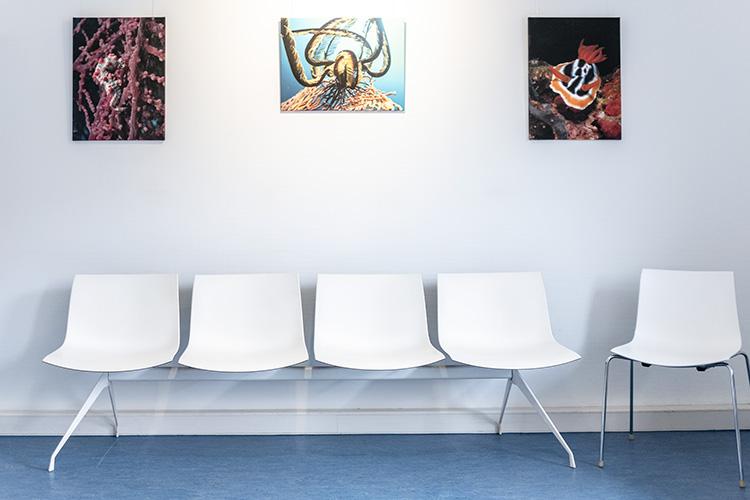 Praxis als Galerie – Ärzte als Künstler